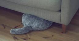 Qoobo猫尾机器人,让你享受抚摸宠物的感觉
