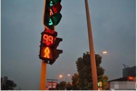 用手机APP操作红绿灯:荷兰人做到了