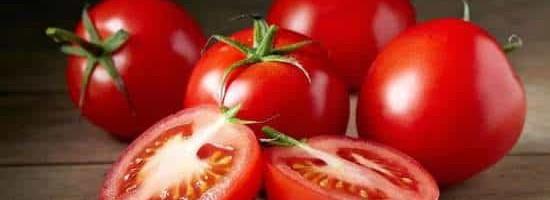 生吃番茄会中毒?